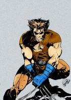 wolverine by richrow
