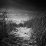 Sand Way by Pixydream