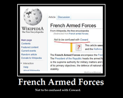 French Armed Forces by ShadowsatDusk