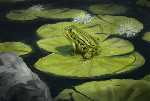Frog by Pterocorn