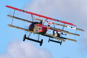 Fokker DR.I Pair by Daniel-Wales-Images