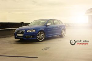 Audi S3 by DimitriBokowPhoto