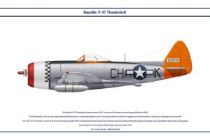 P-47 USAAF 365th FS 1 by WS-Clave