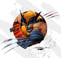 Wolvie by San Colors 2 by SplashColors