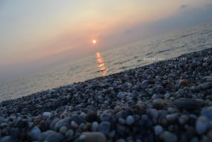 Gazing At The Sunset From The Beach by Daneas