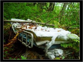 Hospital Bed In Woods by ScaperDeage