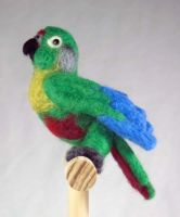 Felted Maroon Belly Conure by The-GoblinQueen