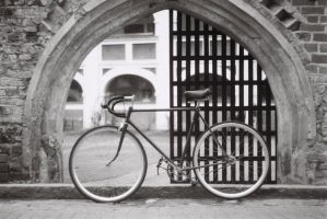 Fixie in bw5 by Crypt012