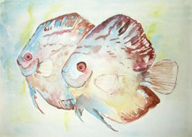 watercolor fishes by Gh0st-0f-Me