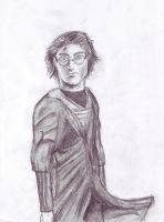 Harry Potter by Inheritance