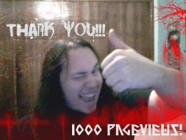 Thank ye for 1000 pageviews by stormthor