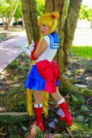 Sailor Moon Fighting pose! by DeathScarlet