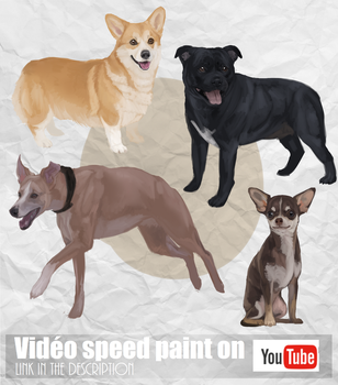 Dogs - Speed painting by Mekreant
