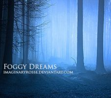 Foggy Dreams by ImaginaryRosse