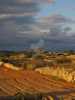 Storms Brewing Up Above by Maltese-Naturalist