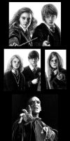 HP Friends and Foes: close up by Jon-Snow