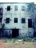 Abandoned Rubber Plant 007 by empyreus-stock