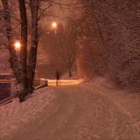 Soft Snow by rici66