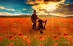Remembrance Day by OutlawNinja