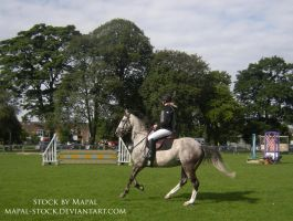 British Show Jumping 1 by mapal-stock