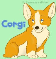 Corgi Pup by TennesseeBabe