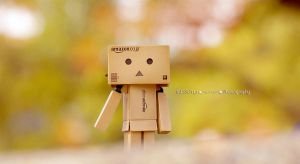 Merely Danbo~ by Missorys