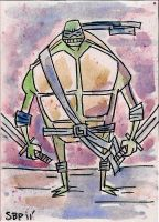TMNT- Leo March of Dimes by SpencerPlatt