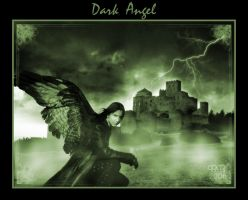 Dark Angel by Brashier