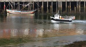Boats at Whitby Harbour by PaulineMoss