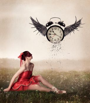 Your-time-will-fly-away  by gestandene