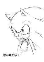 sonic cry 24down he's cheek by bbpopococo