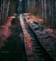 Broken Railroad Still Leads Somewhere by LindaMarieAnson