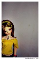 Yellow by animal-nitrate