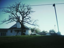 The Church and the Dead Tree by ShadowHeart014