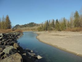 Sweltzer Creek Campground~ 2/28/2015~19 by Mathayis