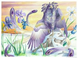 Birdflowers: Iris - February by windfalcon
