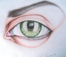 Green Eye II by daniellejanney