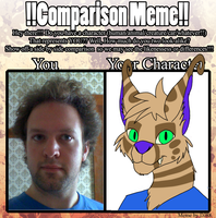 Character Comparison by Flexico