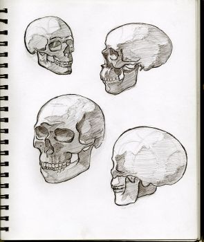 03 Skulls by SeaQuenchal