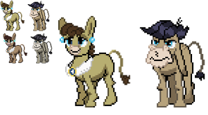 Ponymon Sprites: Cranky and Matilda by DMN666