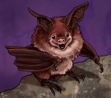 Battybat by pokketmowse