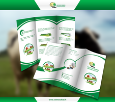LSUS Trifold brochure by repiano
