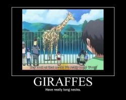Giraffes by JefffWith3Fs