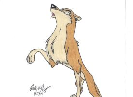 Aleu - Canis Lupus 2 by skipshark773
