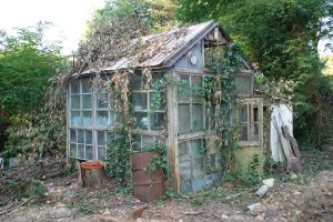 green house stock 3 by rustymermaid-stock