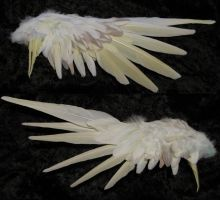 Side Project: Wing by SPPlushies
