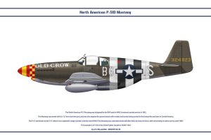 Mustang USAAF 363rd FS 1 by WS-Clave