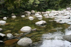 Mossman Gorge.4 by Mind-Matter