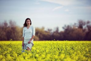 mustard field 2 by mbennion76