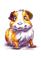 Guinea-Pig 1 by Fany001
